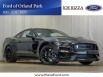 2019 Ford Mustang Shelby GT350 Fastback for Sale in Orland Park, IL