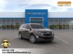 2020 Chevrolet Equinox LT with 1LT FWD for Sale in Glendale Heights, IL