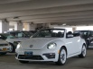 2019 Volkswagen Beetle SEL Final Edition Convertible for Sale in Bronx, NY