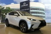 2020 Lexus NX NX 300h AWD for Sale in Miami, FL