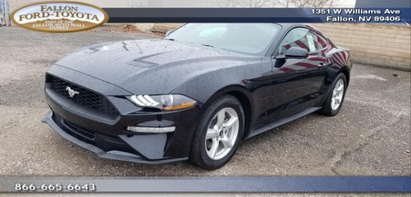 2019 Ford Mustang in Fallon, NV