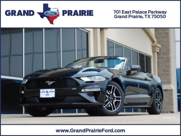 2019 Ford Mustang Ecoboost Premium Convertible For Sale In Grand