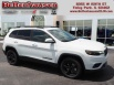 2019 Jeep Cherokee Altitude FWD for Sale in Tinley Park, IL