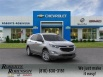 2020 Chevrolet Equinox LS with 1LS FWD for Sale in Excelsior Springs, MO
