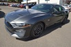 2019 Ford Mustang GT Premium Fastback for Sale in Farmington, NM