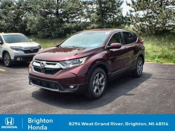 2019 Honda CR-V in Brighton, MI
