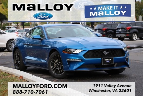 2020 Ford Mustang in Winchester, VA