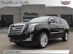 2020 Cadillac Escalade ESV Platinum 4WD for Sale in Dublin, OH