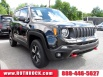 2019 Jeep Renegade Trailhawk AWD for Sale in Allentown, PA