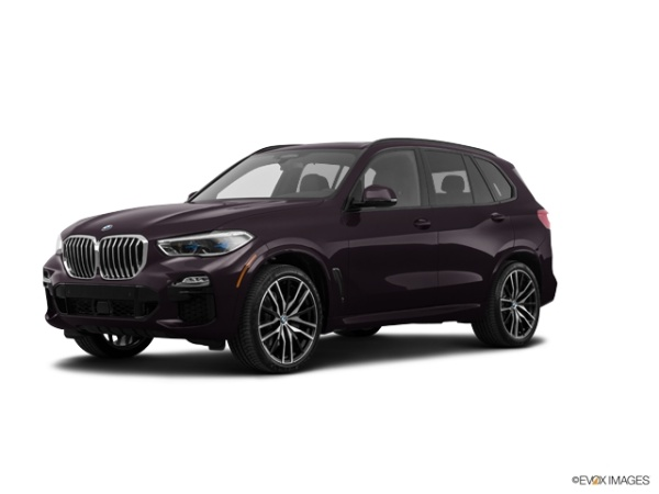 2019 BMW X5 in White Plains, NY
