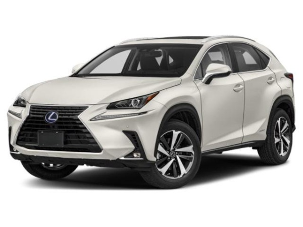 2020 Lexus NX in Northborough, MA
