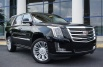 2020 Cadillac Escalade Platinum 4WD for Sale in Smyrna, GA