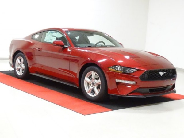 2019 Ford Mustang in Cary, NC
