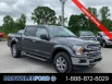 2019 Ford F-150 XLT SuperCrew 5.5' Box 4WD for Sale in Morrison, TN
