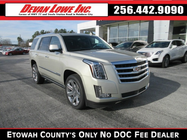 2016 Cadillac Escalade in Rainbow City, AL