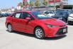 2020 Toyota Corolla LE CVT for Sale in North Hollywood, CA