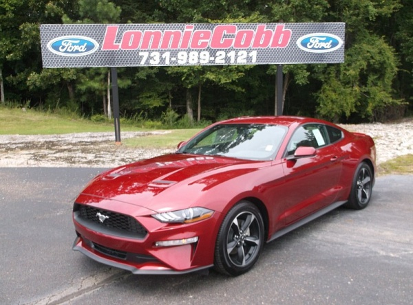 2019 Ford Mustang in Henderson, TN