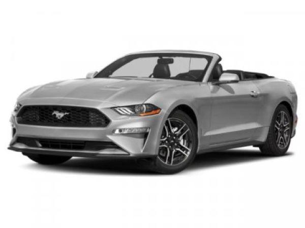 2019 Ford Mustang in Mt. Juliet, TN