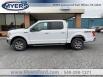 2020 Ford F-150 XLT SuperCrew 5.5' Box 4WD for Sale in Elkton, VA