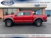 2020 Ford F-150 Raptor SuperCrew 5.5' Box 4WD for Sale in Elkton, VA