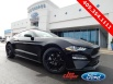2019 Ford Mustang EcoBoost Fastback for Sale in YUKON, OK