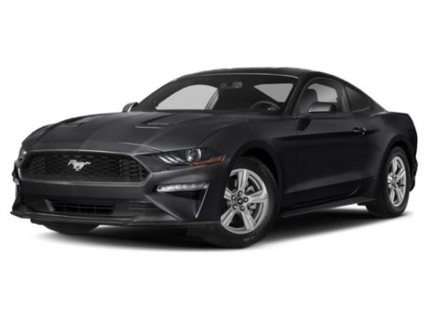 2019 Ford Mustang in Edinburg, TX