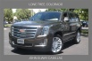 2020 Cadillac Escalade Platinum 4WD for Sale in Lone Tree, CO