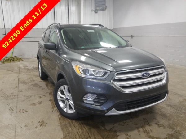 2019 Ford Escape in Genoa, OH