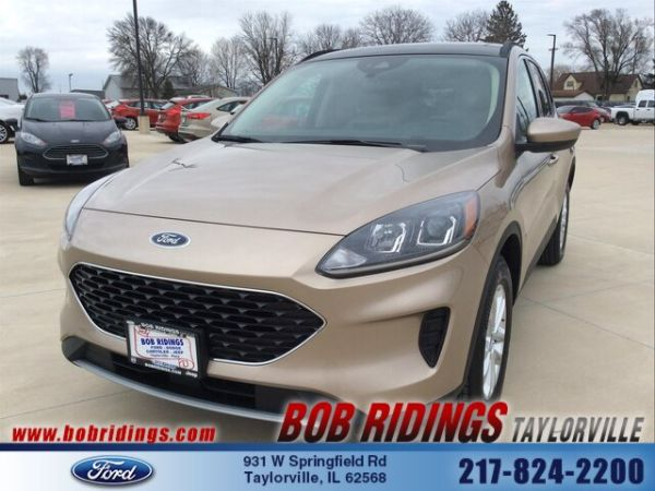 2020 Ford Escape in Taylorville, IL