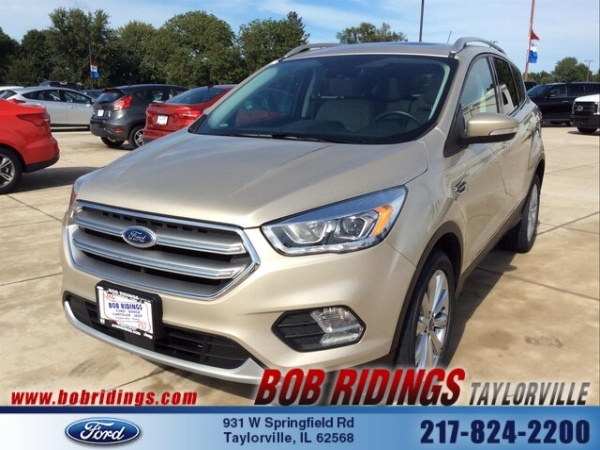 2017 Ford Escape in Taylorville, IL