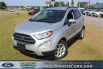 2019 Ford EcoSport SE FWD for Sale in Dothan, AL