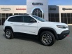 2020 Jeep Cherokee Trailhawk Elite 4WD for Sale in Tifton, GA