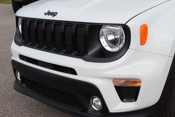 2019 Jeep Renegade in Ludington, MI