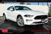 2020 Ford Mustang EcoBoost Premium Fastback for Sale in Thousand Oaks, CA