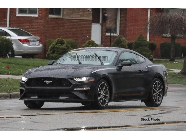 2019 Ford Mustang in Devils Lake, ND