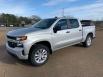 2019 Chevrolet Silverado 1500 Custom Crew Cab Short Box 4WD for Sale in Fayette, AL