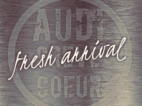 2016 Audi A8 3.0T quattro