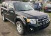 2009 Ford Escape XLT 2.5L I4 Automatic FWD for Sale in Little Valley, NY