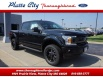2019 Ford F-150 XLT SuperCrew 5.5' Box 4WD for Sale in Platte City, MO