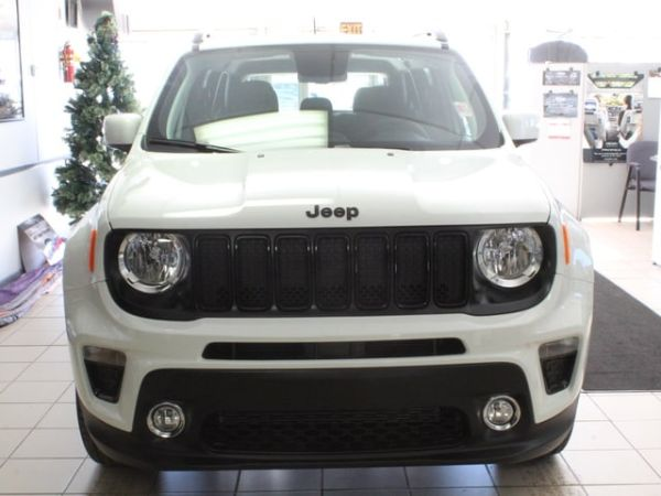 2020 Jeep Renegade in Manistee, MI