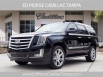 2020 Cadillac Escalade Luxury 2WD for Sale in Tampa, FL