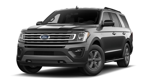 2020 Ford Expedition in Zionsville, IN
