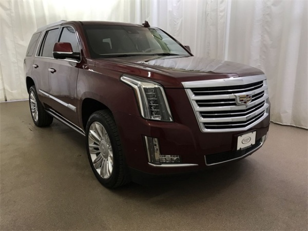 2019 Cadillac Escalade in Colorado Springs, CO