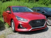 2019 Hyundai Sonata SE 2.4L for Sale in Downingtown, PA