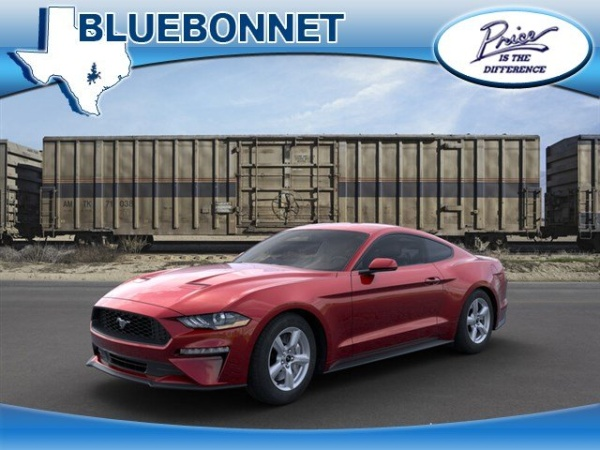 2019 Ford Mustang in New Braunfels, TX