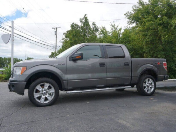 2010 Ford F-150 in Clinton Township, MI