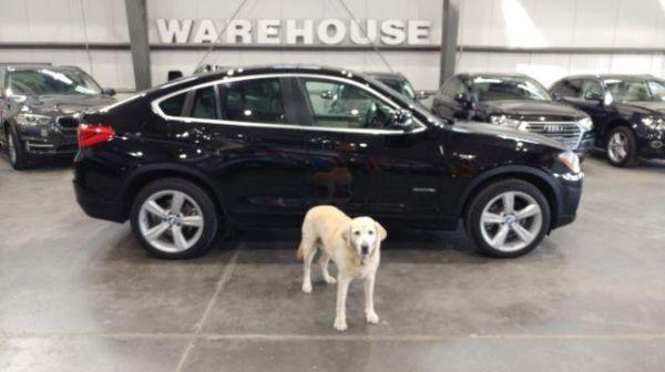 2015 BMW X4 in Golden, CO