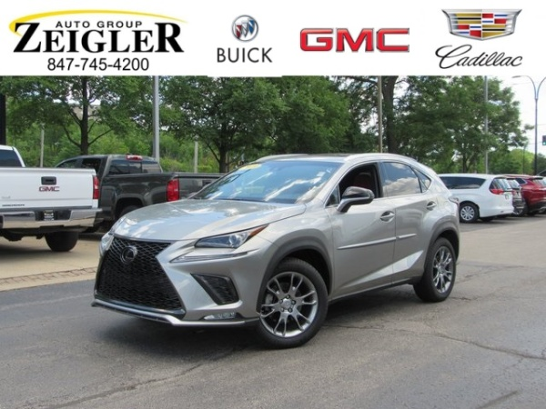 2019 Lexus NX in Lincolnwood, IL