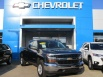 2019 Chevrolet Silverado 1500 LD LT with 1LT Double Cab Standard Box 4WD for Sale in Indianapolis, IN