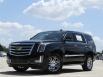 2020 Cadillac Escalade 2WD for Sale in Frisco, TX